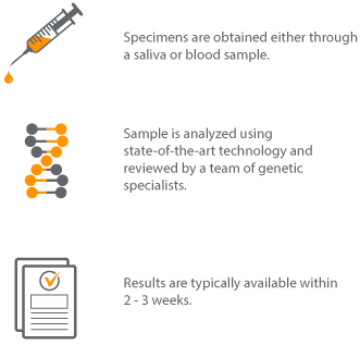 Genetic testing and how it works illustration